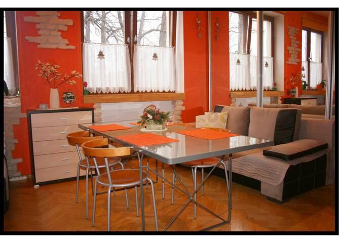 Apartamenty Paradis Zakopane15