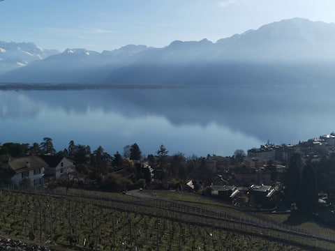 Small Room with Stunning Lake Views of Lac Leman