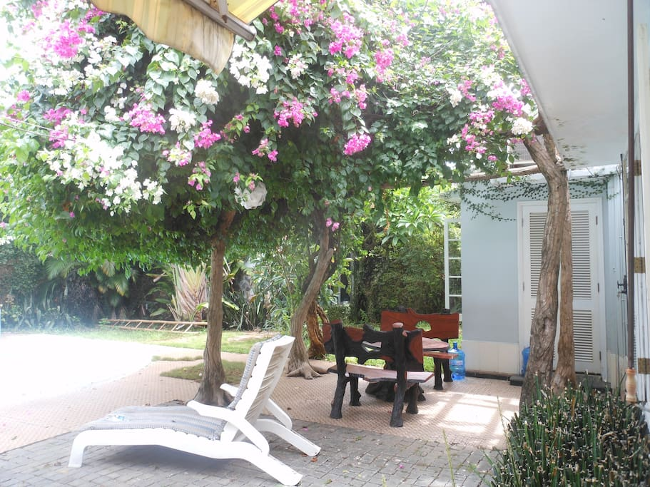 Relax under the bouginvillea and frangipani trees.