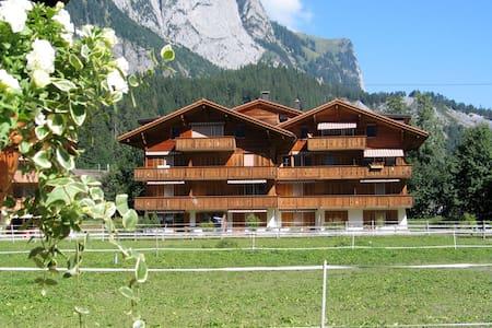 Alpine holidays - Kandersteg - Apartment