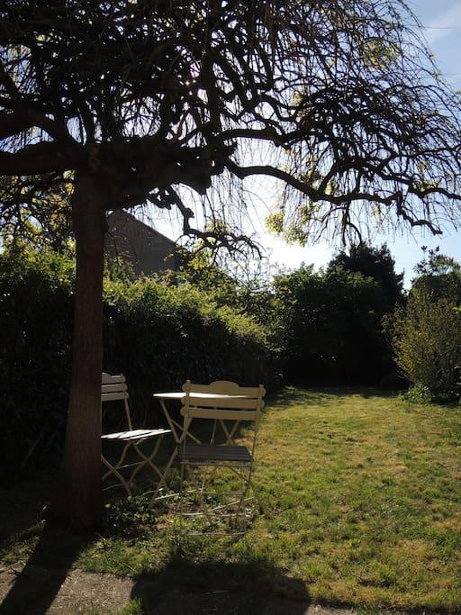 Charmante maison ville avec jardin maisons louer tours centre france - Maison avec jardin uccle tours ...