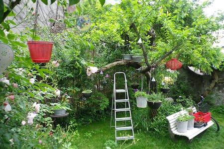 Chambre dans maison privée, jardin - Tours