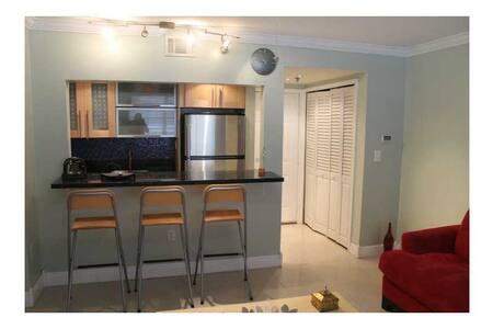 1 bedroom apartment on Collins!/c2 - Miami Beach - Apartment