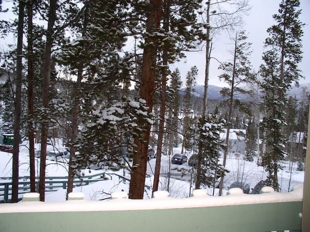 Mountain Ski Condo in Colorado - Silverthorne - Daire