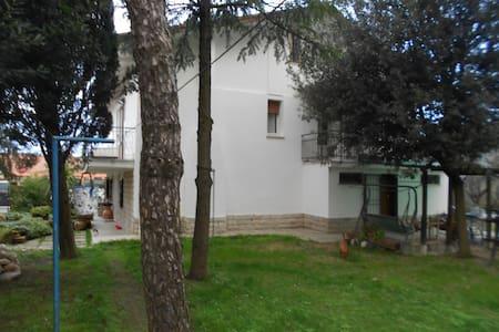 Riccione,  appartamento  vicinanze - Sant'Andrea In Besanigo