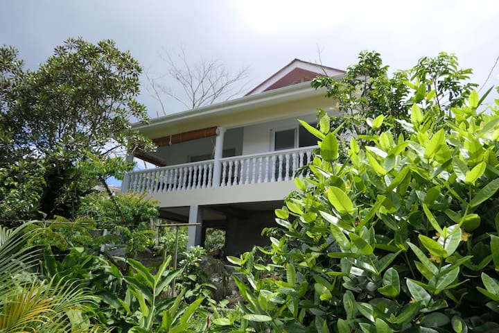 Tropical Garden Self Catering - Lemon Tree