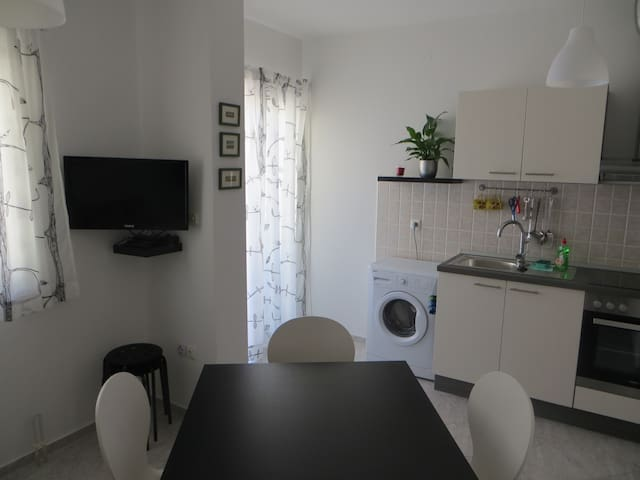 Spacious apartment in Novigrad - Novigrad - Apartment