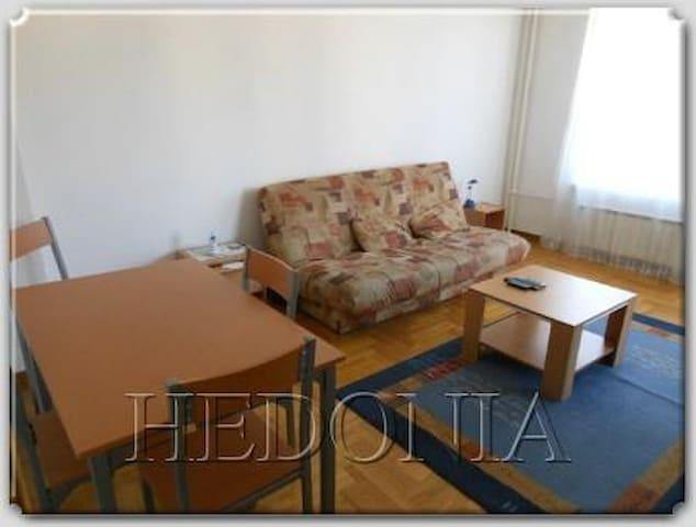 Flat at New Belgrade Arena area - Belgrad - Apartament