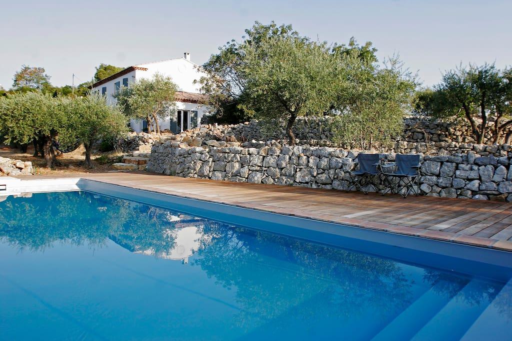 Villa piscine oliviers plein sud maisons louer for Location villa cote d azur piscine
