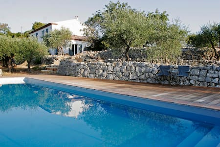 Peaceful villa in olive plantation - Belgentier