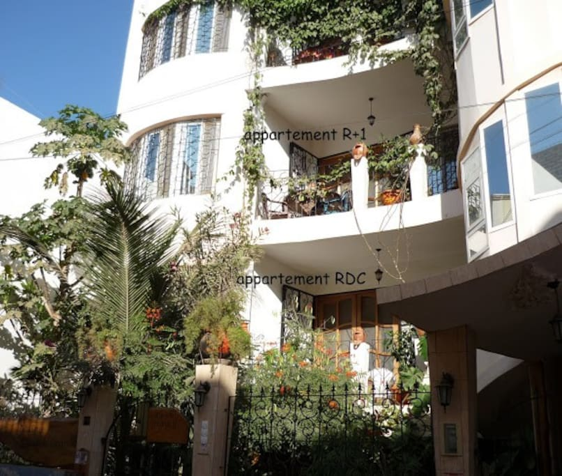 Find Rent Houses: Ecological Apartment In Dakar (160 M²)