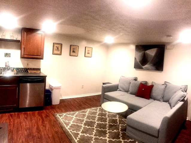 South Side 1 Bedroom Apt - 1 Block from Carson St.