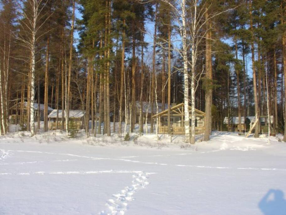 Kuvassa näkyvistä rakennuksista Pikku-Härkä-mökki on vasemmanpuoleinen. Siitä seuraava on pariaitta, takana näkyy viereinen Isä-Härkä-huvila, rannassa rantasauna ja oikeanpuoleisimpana puuvarasto. Kuva on otettu talvella jäältä.