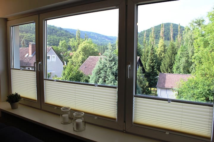 Ferienwohnung Pios Lucht**** - Bad Harzburg - Leilighet