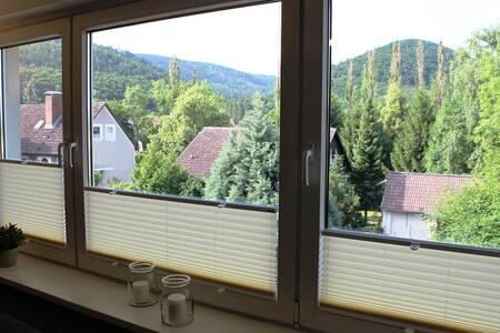 Ferienwohnung Pios Lucht**** - Bad Harzburg - Διαμέρισμα