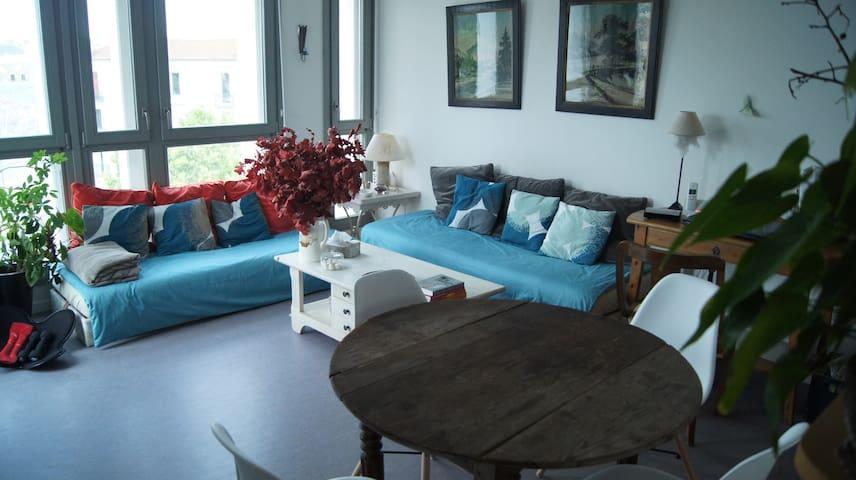 Chambre individuelle dans appartement bien situé - Nancy - Huoneisto