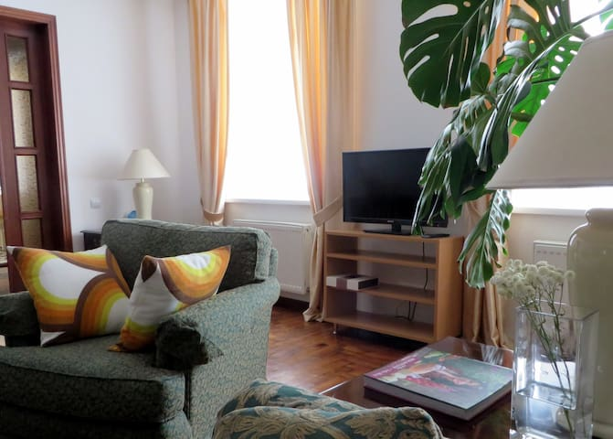 City's green heart: 1BR cozy condo on busy street - Chișinău - Wohnung