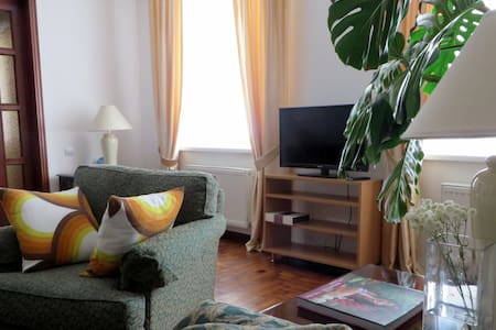 City's green heart: 1BR cozy condo on busy street - Chișinău - อพาร์ทเมนท์