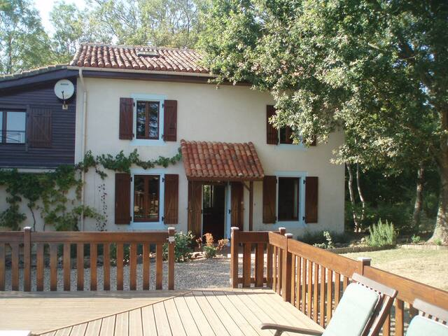 Beautiful Detached Farmhouse with Large Pool - Lésignac-Durand - House