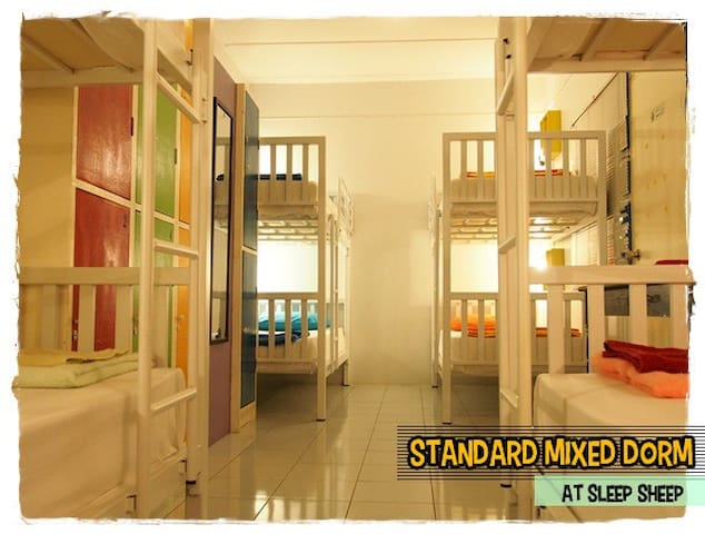 8 BDS Shared In Standard Mixed Dorm - Phuket - Haus