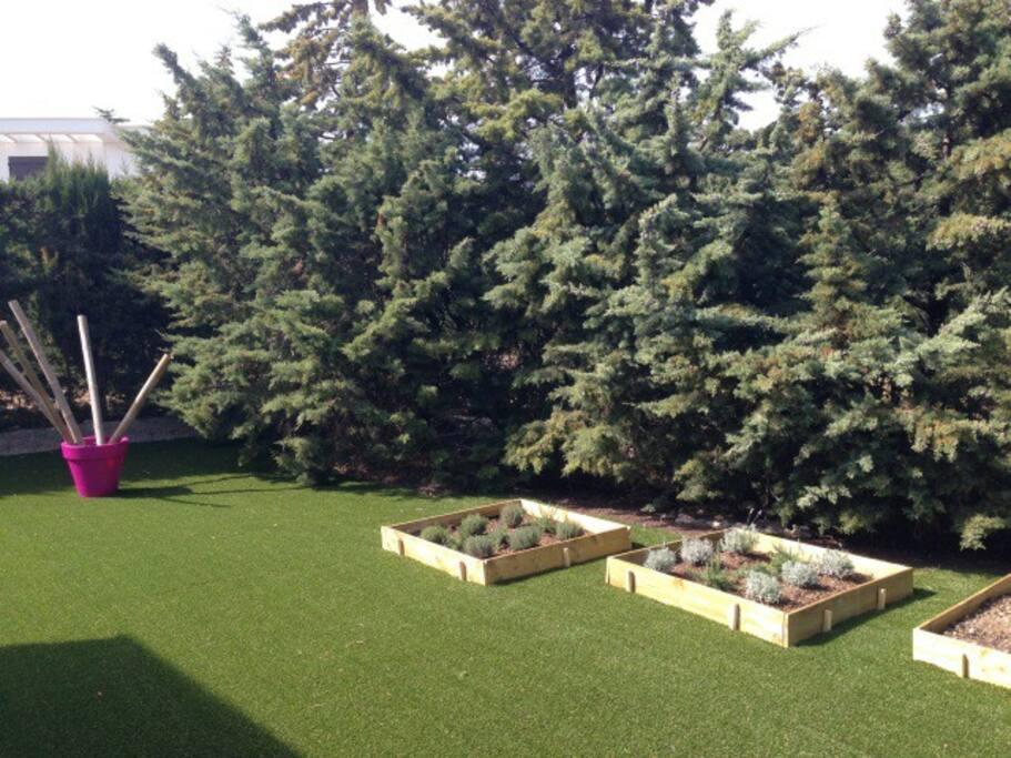 jardin avec carrés potager