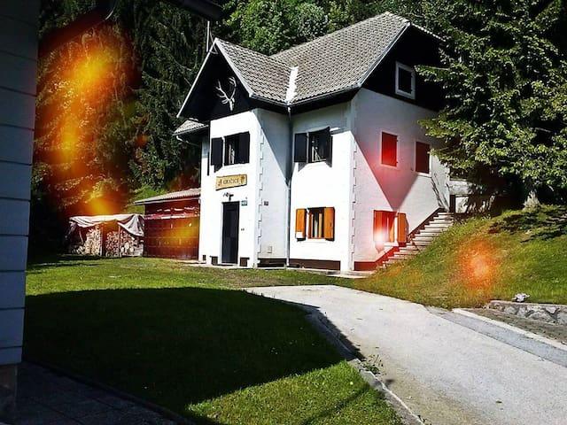 Ski&Spa apartment house - Črmošnjice - Chalupa