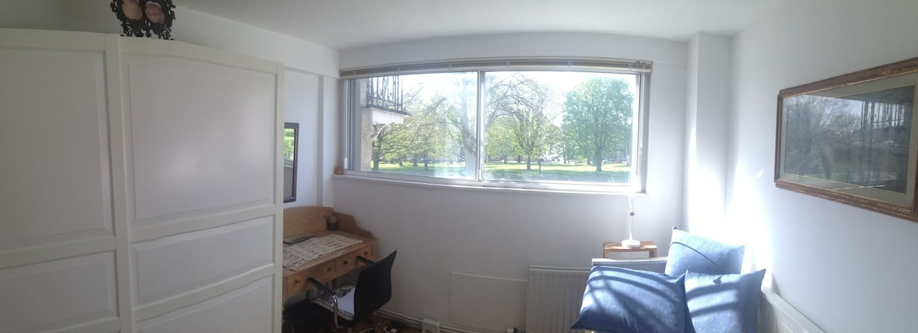 Small bright room in Clifton - Bristol - Apartment