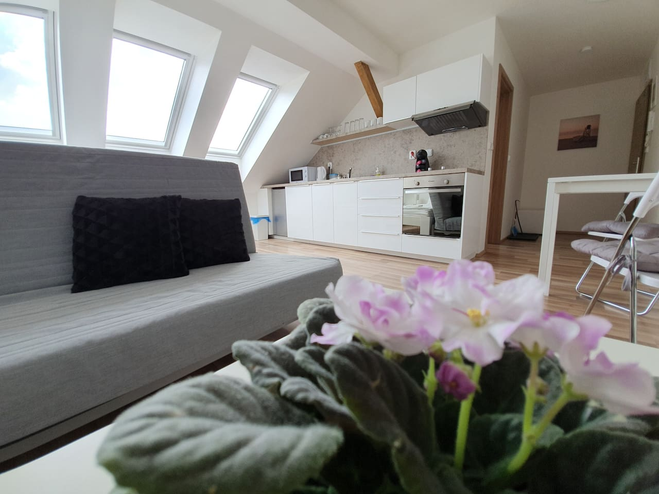 Sunny and comfy apartment