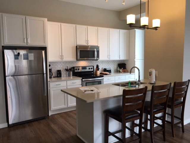 1BR in DOWNTOWN Mpls - cheaper than hotel!