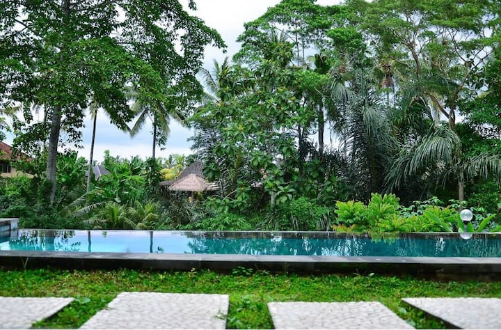 Tri Datu villas with jungle view, Sommelier Studio