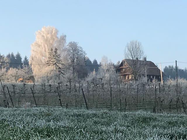 Charmante Wohnung auf Bauernhof - Dietwil - Kondominium