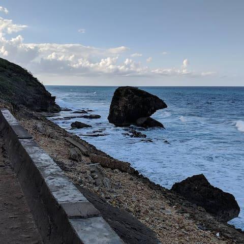 Puerto Rico Northwest Guidebook
