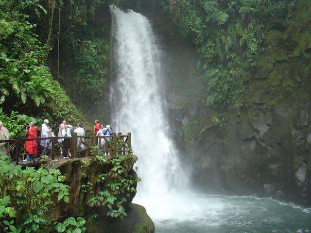 Water Falls Gardens at Peace Lodge