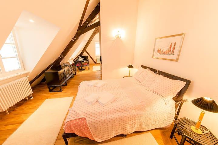 Windeck Suite im hist. Kleinod - Weinheim