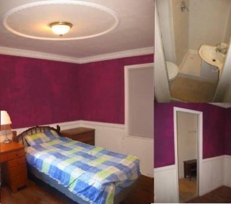 Bedroom hardwood floor walk-in closet with mirror sliding door , Shower bath