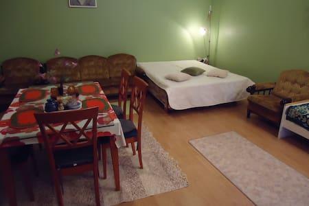 аренда студии 40кв для 3(4)человек - Kotka - Rumah
