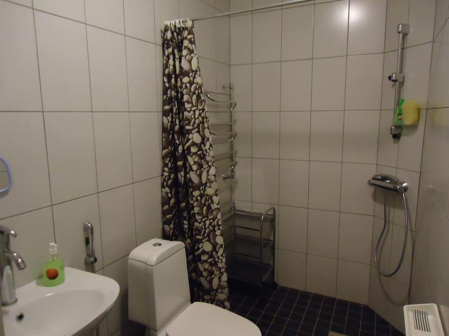 туалет совмещенный с душем