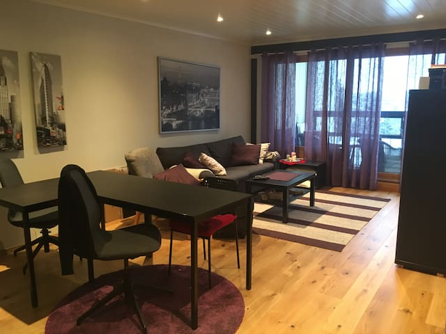 Nice apartment w/easy access to airport & OsloCity