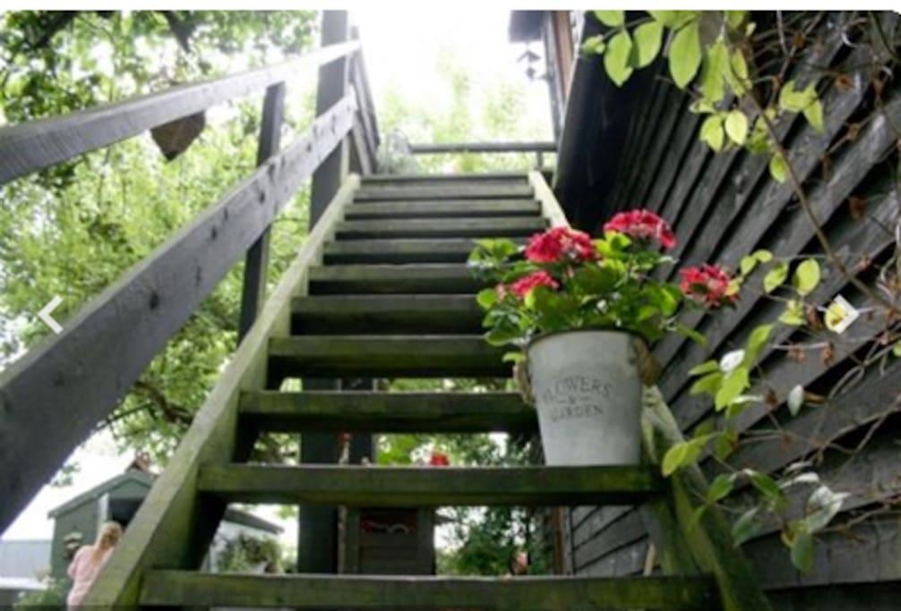 Steps leading up to Little Oak….