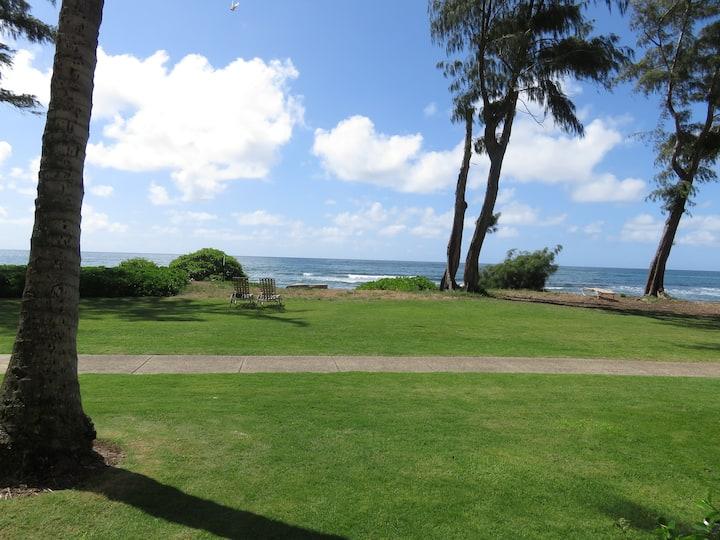 Kauai Direct Oceanfront Condo #151