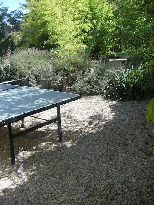 Private terrace with Table Tennis