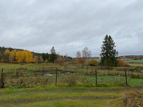 Hytte på hestefarm i smukke Åsbodalen