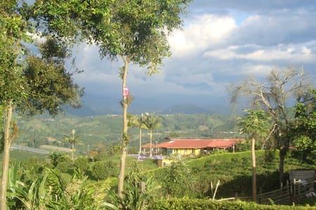 Coffee Farm - La Palma - Chinchina - Faház