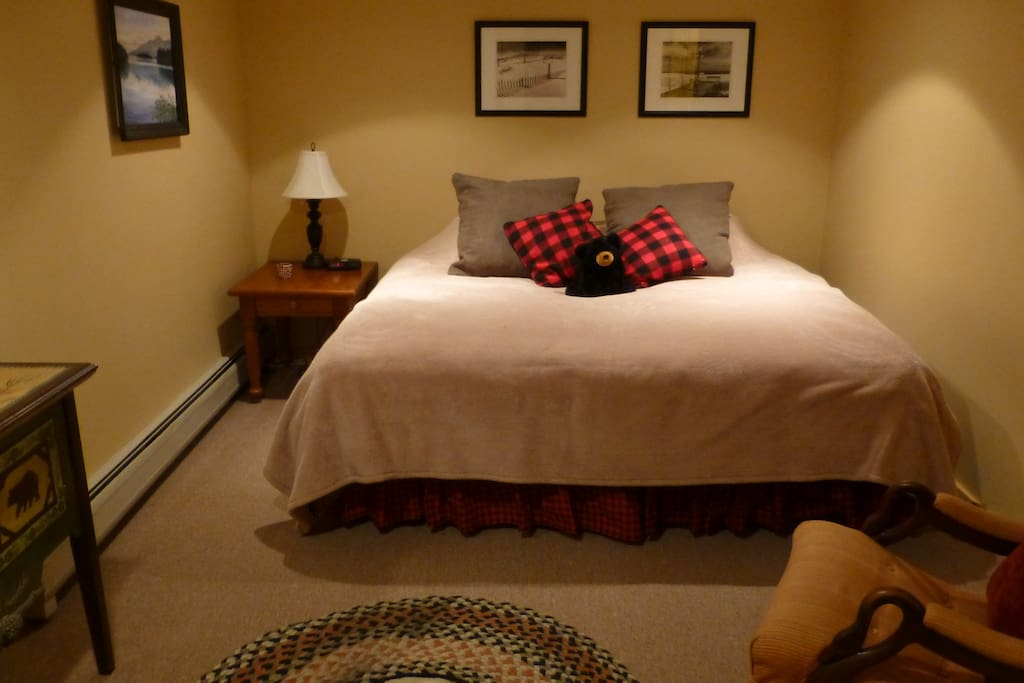 Rentable lower level guest room set up with a king size bed