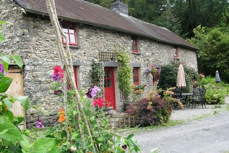 Farm holiday let Lampeter Wales - Cellan