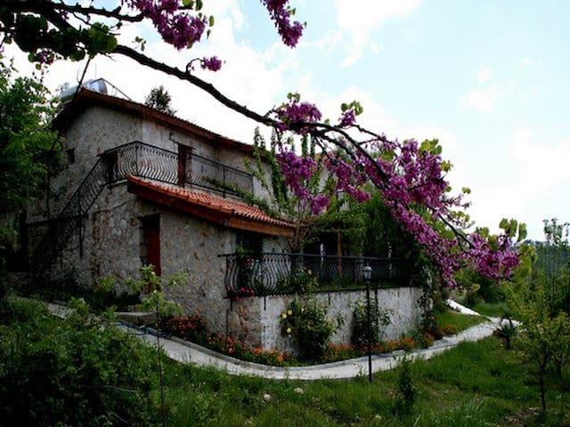 büyük korunaklı eflatun - Yakaköy - Villa