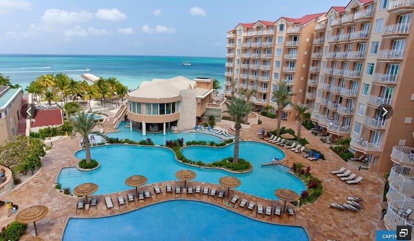 Divi Aruba Phoenix Beach Resortx - Palm Beach - Daire