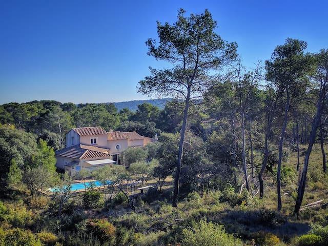 Villa au coeur de l'olivette à l'abri des regards - Saint-Bauzille-de-Montmel - Casa de camp