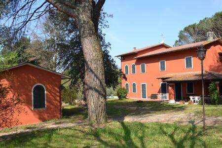 Wonderful Tuscan villa for families - Marginone