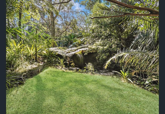Dragonslair, natures oasis, Corrimal, Wollongong
